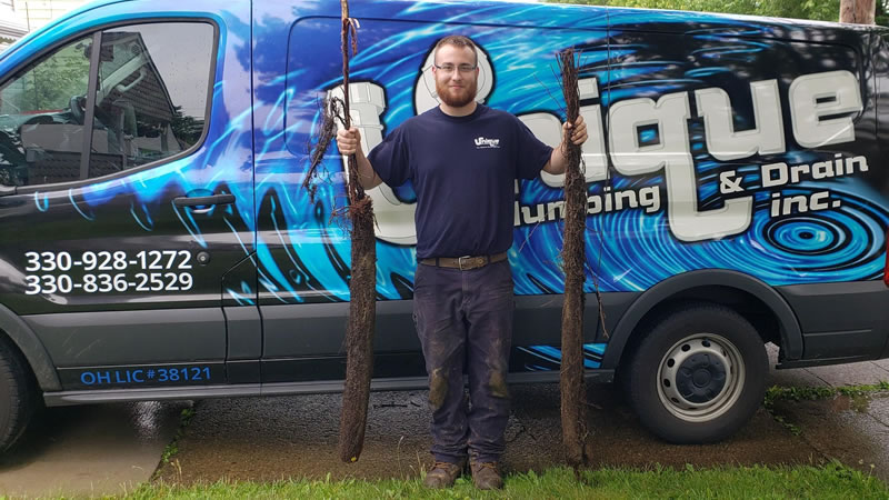 Plumber Holding Tree Roots That Have Just Been Removed From a Clogged Drain In Akron Ohio